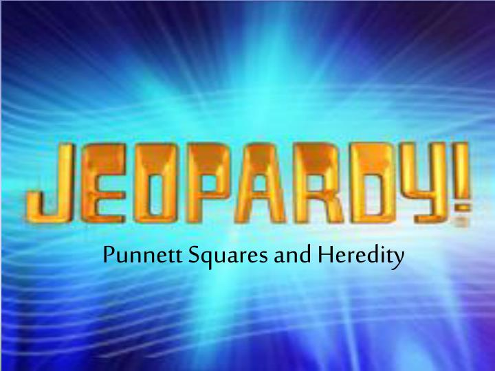 punnett squares and heredity n.