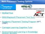 math placement testing options