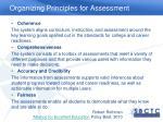 organizing principles for assessment