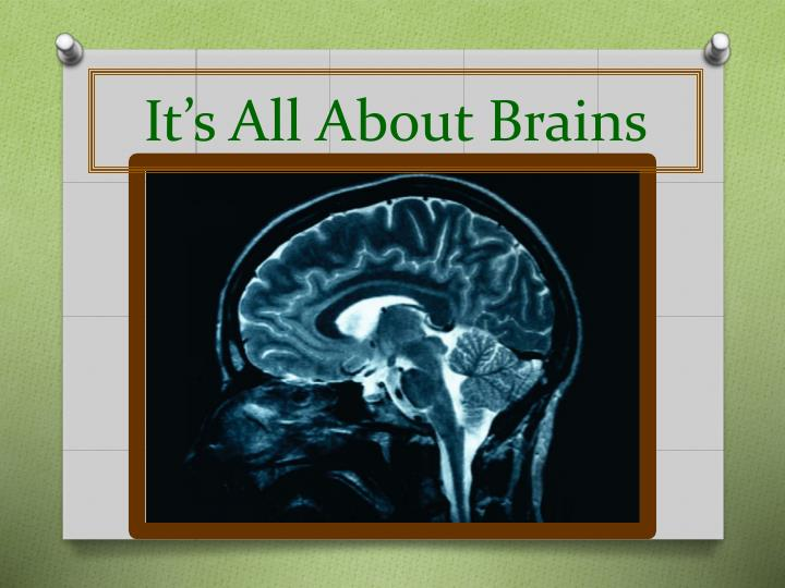 It's All About Brains