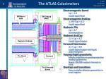 the atlas calorimeters