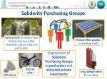 solidarity purchasing groups