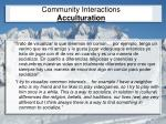 community interactions acculturation