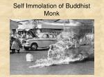 self immolation of buddhist monk