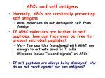 apcs and self antigens