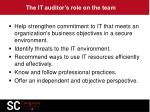 the it auditor s role on the team