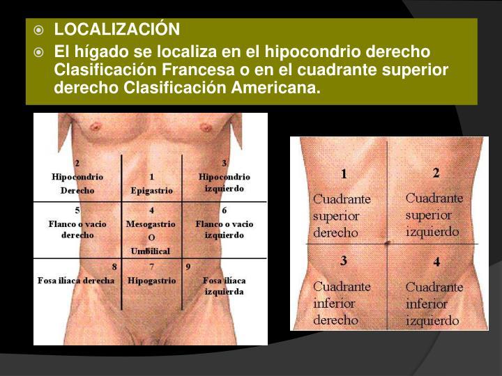 PPT - Anatomía y Fisiología del Hígado e Hipertensión Portal ...