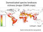 domesticated species landraces richness major cgiar crops