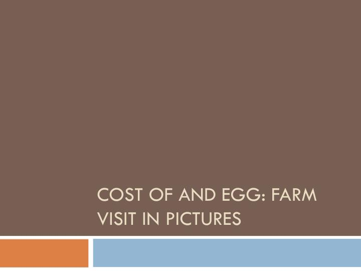 cost of and egg farm visit in pictures n.