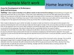 example merit work1