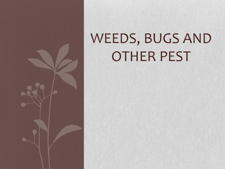 weeds bugs and other pest n.