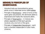 mendel s principles of inheritance