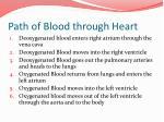 path of blood through heart