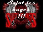 salut les anges