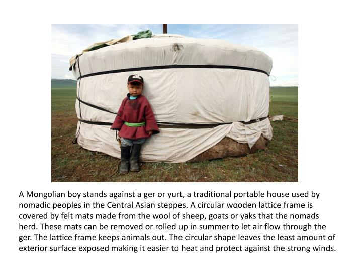 A Mongolian boy stands against a