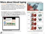 more about blood typing