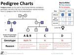 pedigree charts1