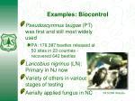 examples biocontrol
