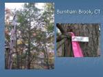 burnham brook ct