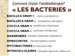 comment choisir l antibioth rapie les bacteries1