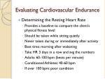 evaluating cardiovascular endurance4