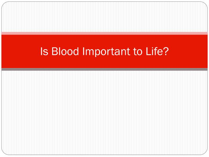 is blood important to life n.