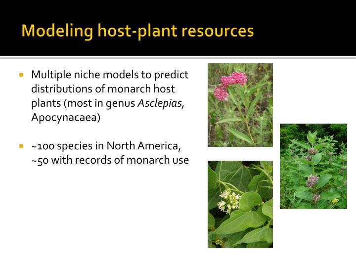 Modeling host-plant resources