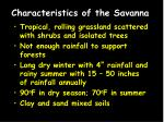 characteristics of the savanna