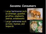 savanna consumers