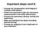 important steps cont d