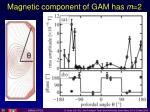 magnetic component of gam has m 2