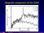 magnetic component of the gam