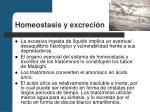 homeostasis y excreci n