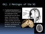 obj 2 meninges of the ns2
