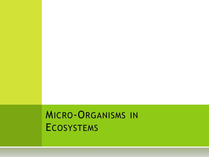 micro organisms in ecosystems n.
