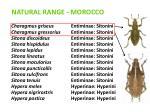 natural range morocco2