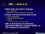 xml what it is