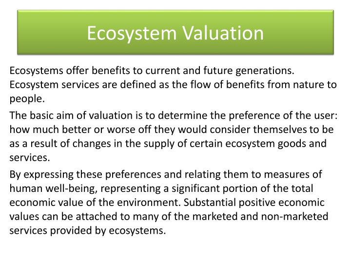 ecosystem valuation n.