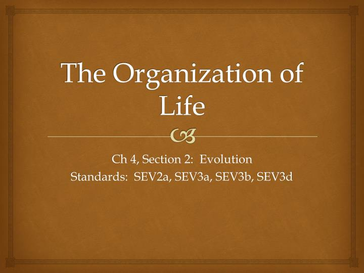 the organization of life n.