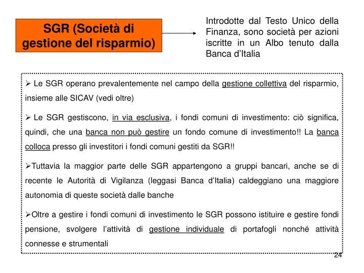 Introdotte dal Testo Unico della Finanza, sono società per azioni iscritte in un Albo tenuto dalla Banca d'Italia