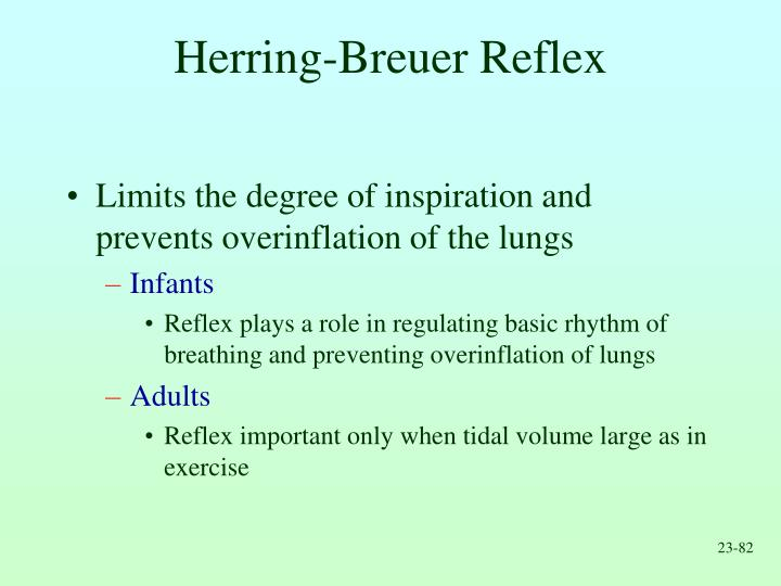 Herring-Breuer Reflex
