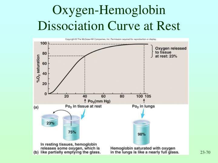 Oxygen-Hemoglobin