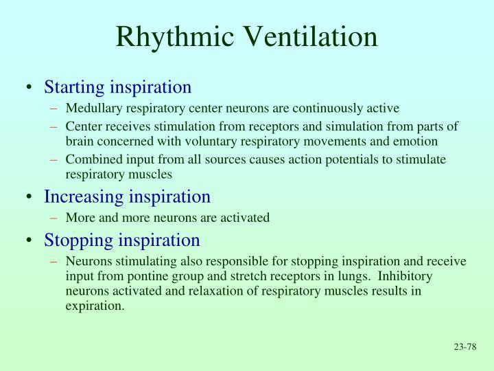 Rhythmic Ventilation