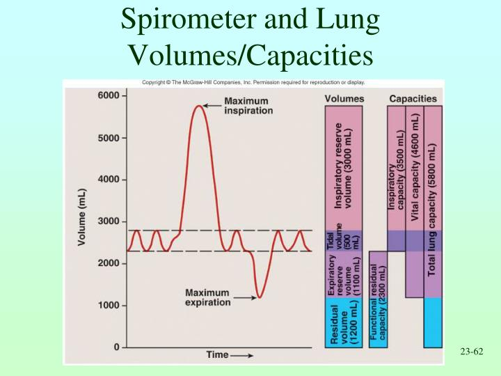 Spirometer and Lung Volumes/Capacities