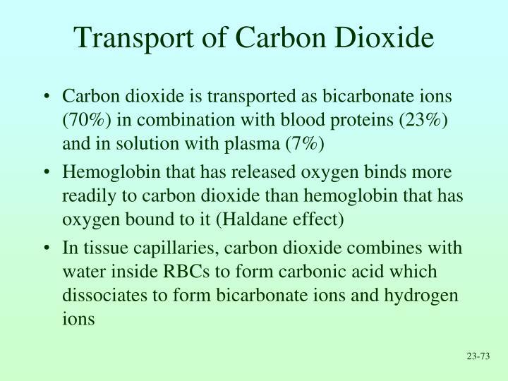 Transport of Carbon Dioxide