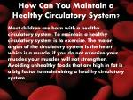 how can you maintain a healthy circulatory system
