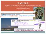 pamela payload for matter antimatter exploration and light nuclei astrophysics