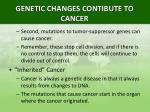 genetic changes contibute to cancer2