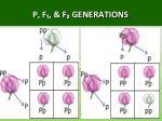p f f generations2