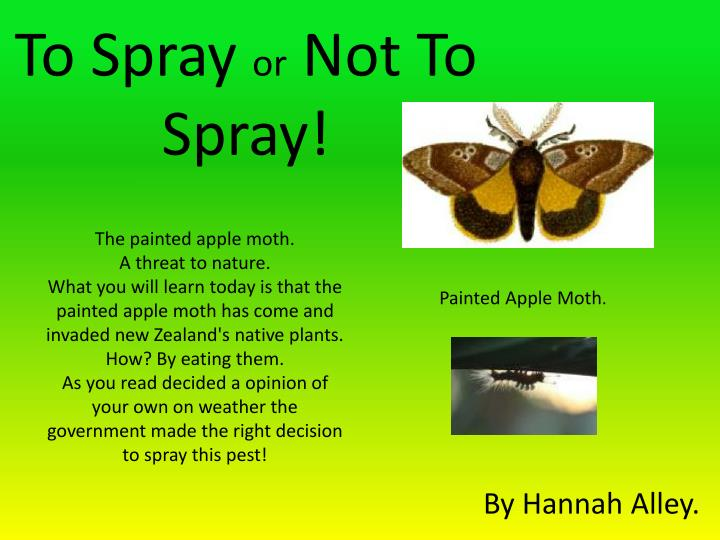 to spray or not t o spray n.